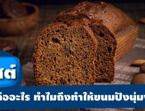 ยีสต์ คืออะไร ทำไมถึงทำให้ขนมปังนุ่มฟู